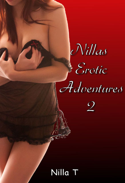 Nillas Erotic Adventures 2, Nilla T