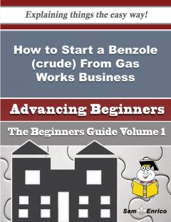 How to Start a Benzole (crude) From Gas Works Business (Beginners Guide), Kera Pitt