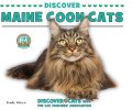Discover Maine Coon Cats, Trudy Micco