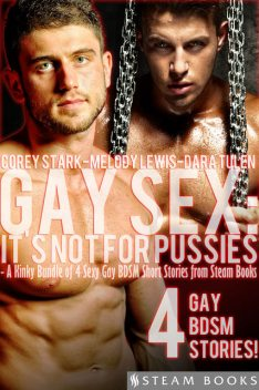 Gay Sex: It's Not For Pussies – A Kinky Bundle of 4 Sexy Gay BDSM Short Stories from Steam Books, Dara Tulen, Melody Lewis, Corey Stark