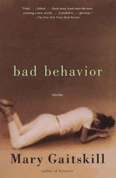 Bad Behavior, Mary Gaitskill