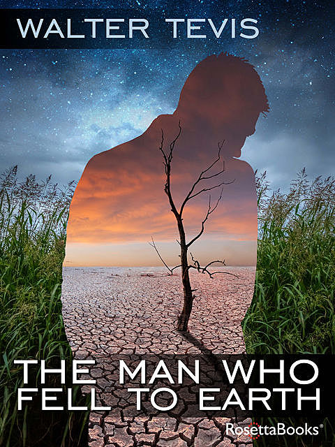The Man Who Fell to Earth, Walter Tevis