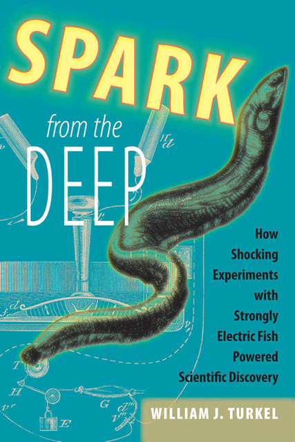 Spark from the Deep, William J. Turkel