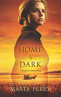 Home by Dark, Marta Perry