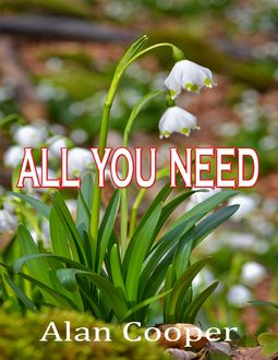 All You Need, Alan Cooper