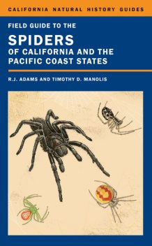 Field Guide to the Spiders of California and the Pacific Coast States, Richard Adams