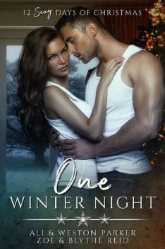 One Winter Night: A Sexy Bad Boy Holiday Novel (The Parker's 12 Days of Christmas), Ali Parker, Weston Parker, Blythe Reid, Zoe Reid