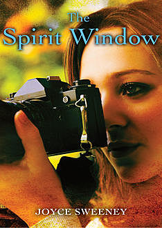 The Spirit Window, Joyce Sweeney
