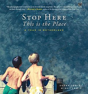 Stop Here, This is the Place, Susan Conley