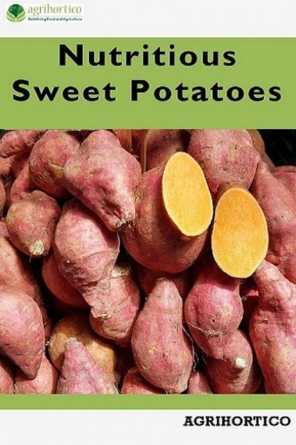 Nutritious Sweet Potatoes, Agrihortico CPL