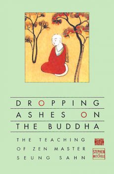 Dropping Ashes on the Buddha, Stephen Mitchell