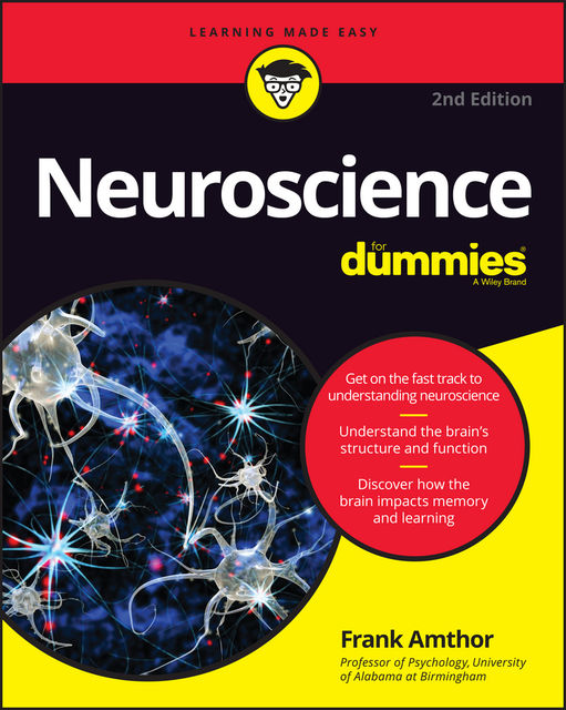 Neuroscience For Dummies, Frank Amthor
