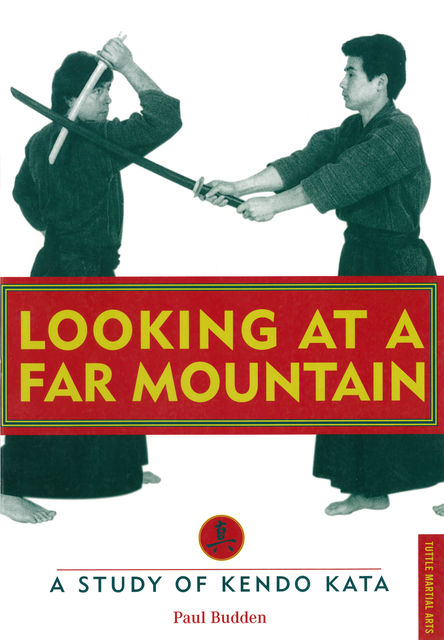 Looking at a Far Mountain, Paul Budden