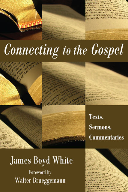Connecting to the Gospel, James White