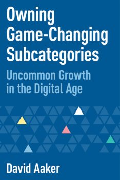 Owning Game-Changing Subcategories, David Aaker