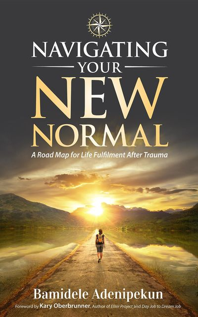Navigating Your New Normal, Bamidele Adenipekun