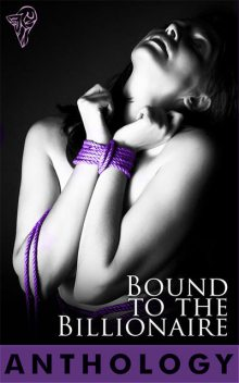 Bound to the Billionaire, Wendi Zwaduk, Sierra Cartwright, Natalie Dae