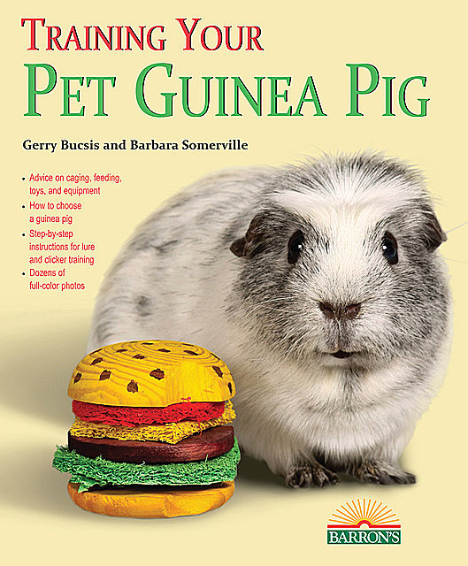 Training Your Guinea Pig, Barbara Somerville, Gerry Bucsis