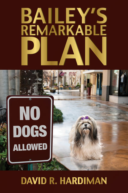 Bailey's Remarkable Plan, David R. Hardiman