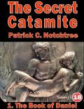 The Secret Catamite: 1. The Book of Daniel, Patrick C Notchtree