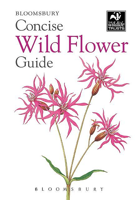 Concise Wild Flower Guide, Bloomsbury Publishing