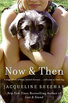 Now & Then, Jacqueline Sheehan