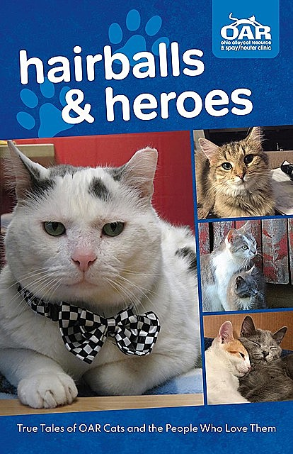 Hairballs and Heroes, Ohio Alleycat Resource