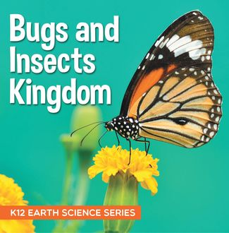 Bugs and Insects Kingdom : K12 Earth Science Series, Baby Professor