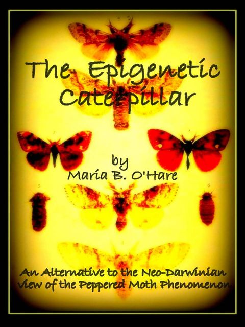 The Epigenetic Caterpillar: An Alternative to the Neo-Darwinian view of the Peppered Moth Phenomenon, Maria B O'Hare