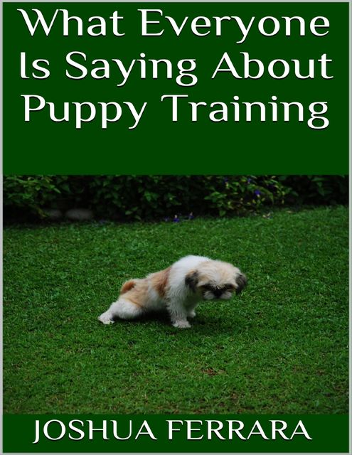 What Everyone Is Saying About Puppy Training, Joshua Ferrara