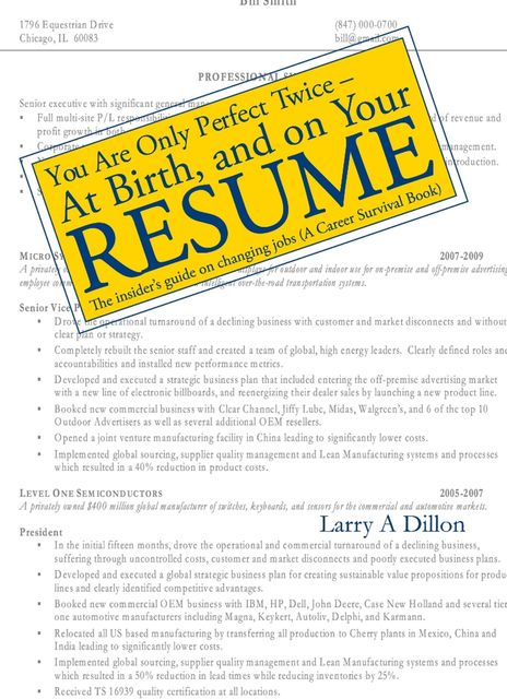 You're Only Perfect Twice: At Birth and on Your Resume~At Birth and on Your Resume, Larry Dillon