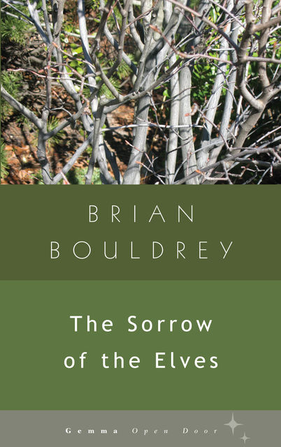 The Sorrow of Elves, Brian Bouldrey