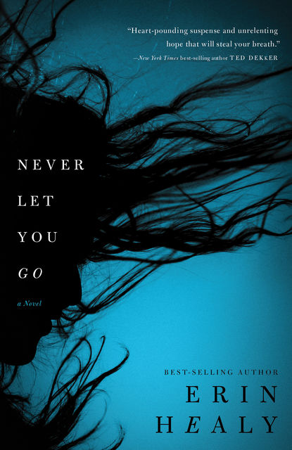 Never Let You Go, Erin Healy