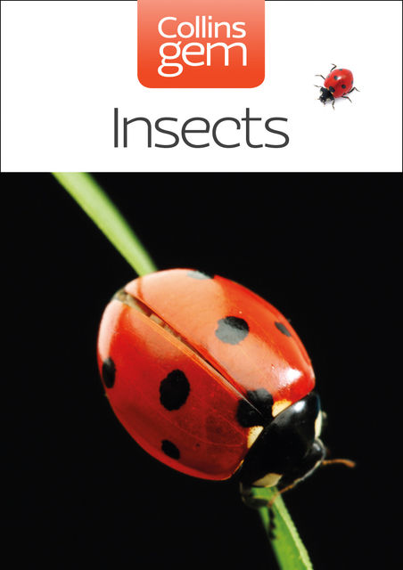 Insects (Collins Gem), Michael Chinery