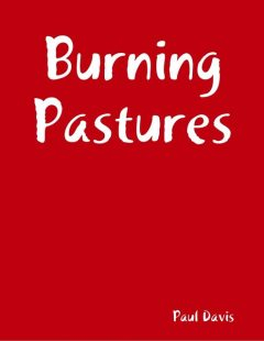 Burning Pastures, Paul Davis