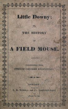 Little Downy / The History of A Field-Mouse, Catharine Parr Strickland Traill