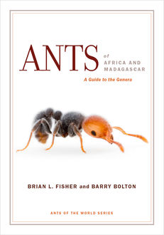 Ants of Africa and Madagascar, Brian Fisher, Barry Bolton