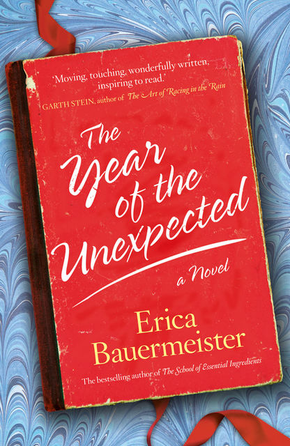 Year of the Unexpected, Erica Bauermeister