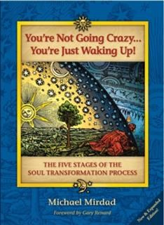 You're Not Going Crazy … You're Just Waking Up, Michael Mirdad