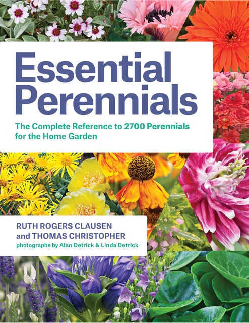 Essential Perennials, Ruth Rogers Clausen, Thomas Christopher