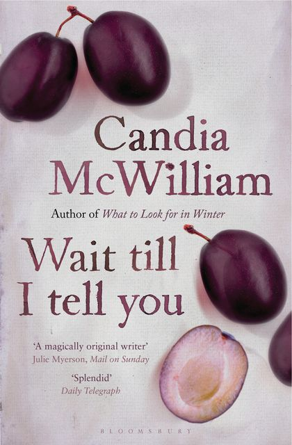 Wait Till I Tell You, Candia McWilliam