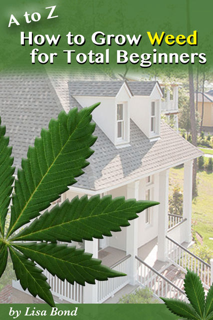 A to Z How to Grow Weed at Home for Total Beginner, Lisa Bond