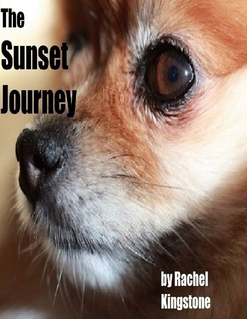 The Sunset Journey, Rachel Kingstone