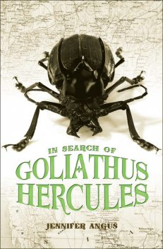 In Search of Goliathus Hercules, Jennifer Angus