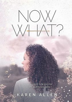 Now What? A quick guide to help you rise when life knocks you down, Karen Allen