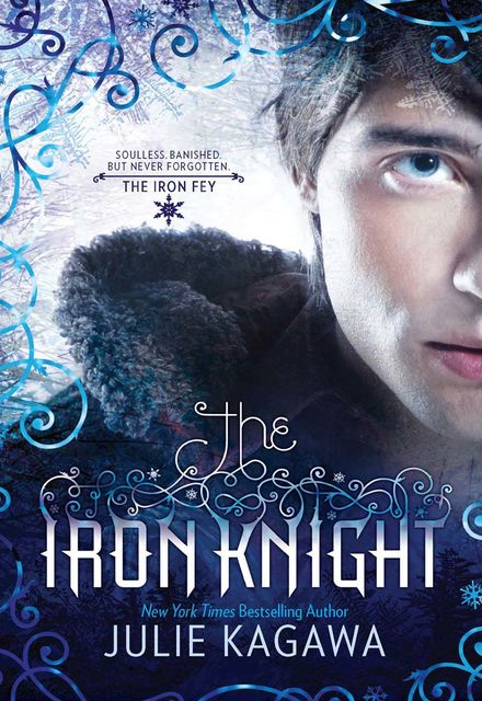 The Iron Knight, Julie Kagawa