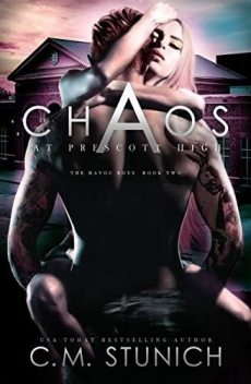 Havoc Boys #2: Chaos At Prescott High, C.M. Stunich