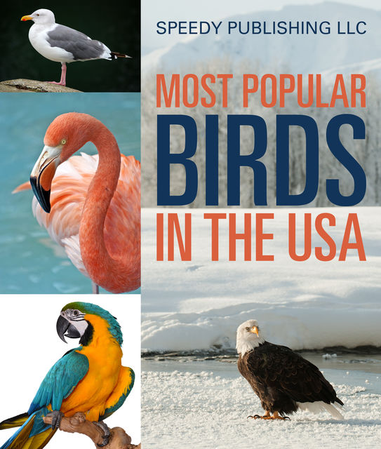 Most Popular Birds In The USA, Speedy Publishing