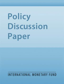 Interventions in Banks During Banking Crises – The Experience of Indonesia, Charles Enoch