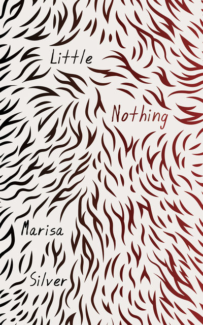 Little Nothing, Marisa Silver